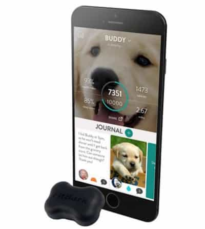 FitBark is our top pick