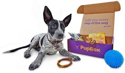 pupbox overview