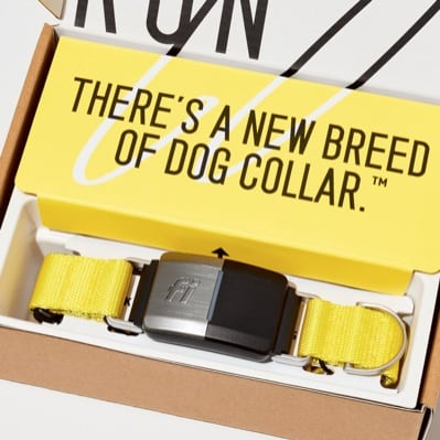 our overview of the fi collar