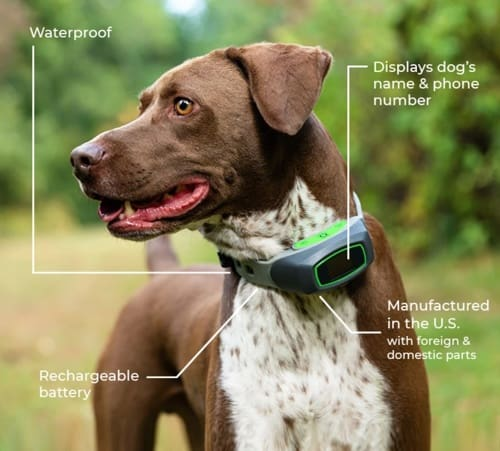 spot on is our top pick for wireless gps dog fences