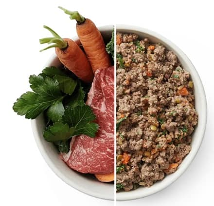 a look at a meal from The Farmer's Dog